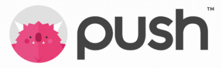 Push Group logo