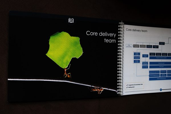 All the necessary core delivery team structure and job descriptions are included in the playbook.